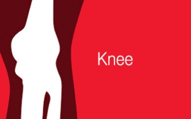 Patient Information Product Type Image-Knee 72dpi